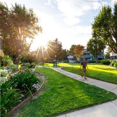 Resident on a walk through the neighborhood near Sofi Waterford Park in San Jose, California