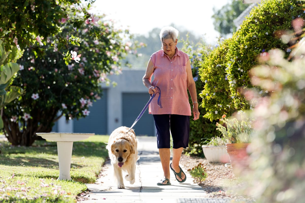 Resident walking their dog at Keystone Place at Naples Preserve in Naples, Florida