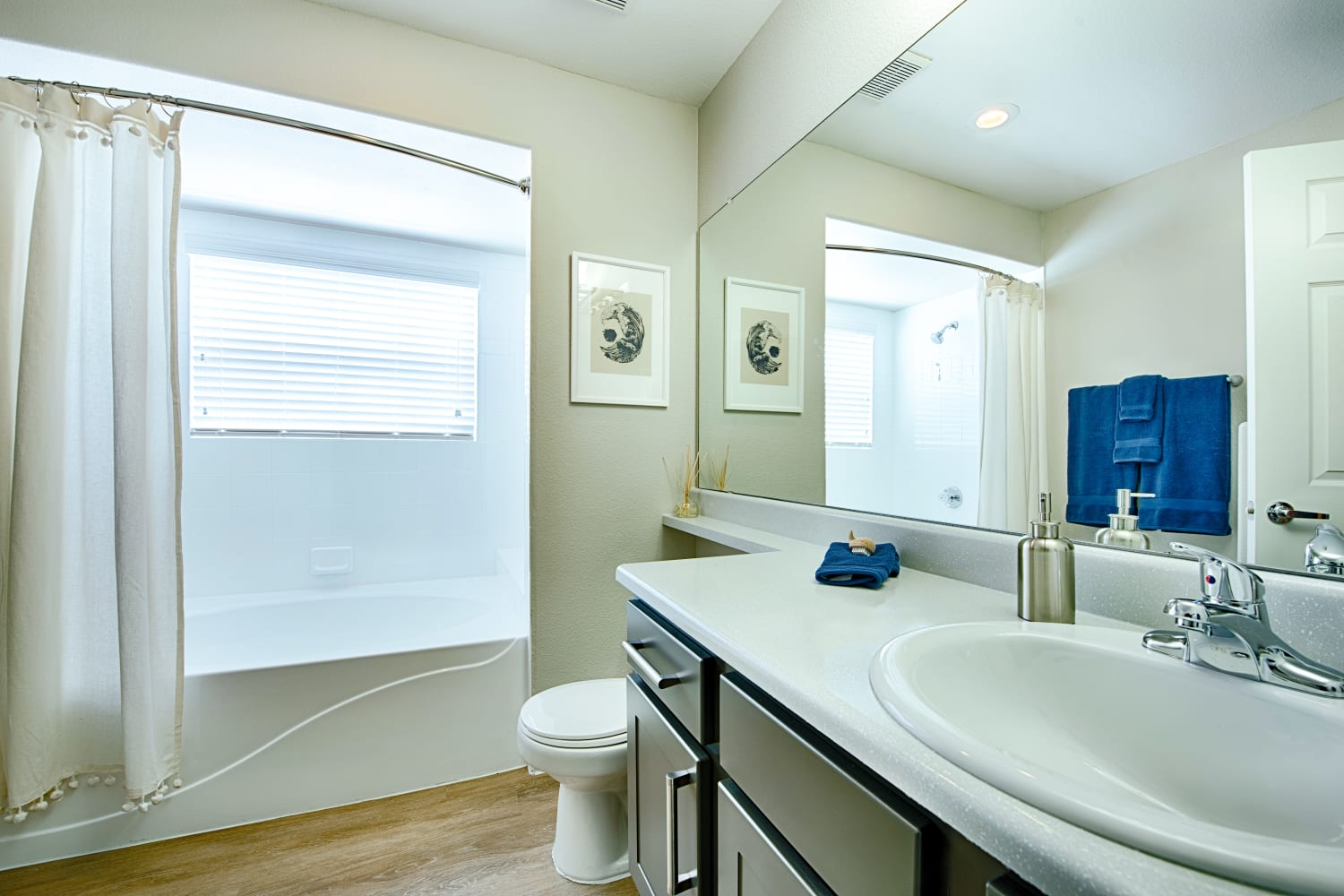 Enjoy bright and open bathrooms at Sonoran Vista Apartments in Scottsdale, Arizona