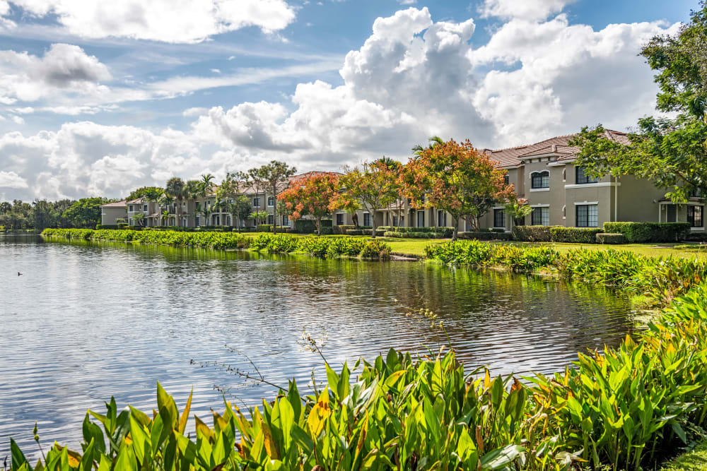 Pond at apartments in Palm Beach Gardens, Florida