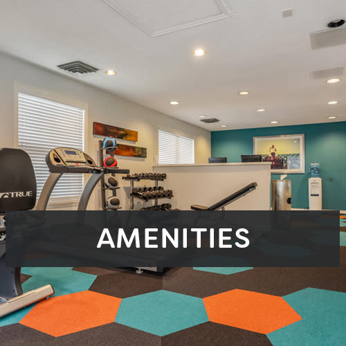 City Center Station Apartments amenities