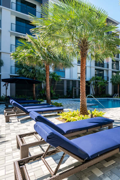Lounge Chairs by Resort Style Swimming Pool at Solera at City Centre in Palm Beach Gardens, Florida