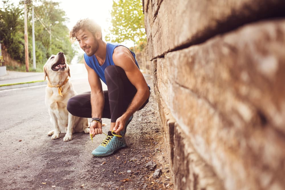 Man out for a run with his dog near Keystone Apartments in Madison, Wisconsin