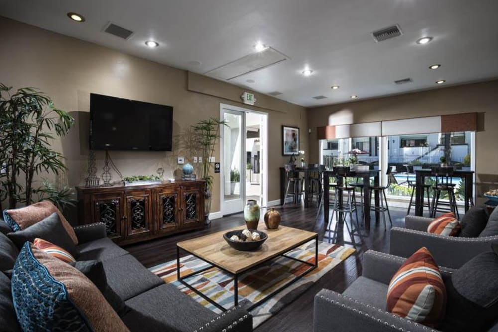 Well Decorated Living Room at Avana La Jolla Apartments in San Diego, CA