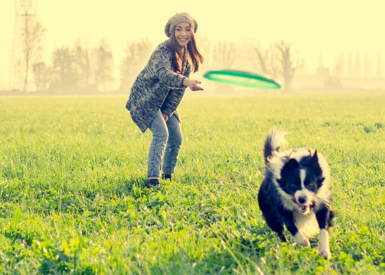 Woman playing fetch with dog near Everly Roseland in Roseland, New Jersey