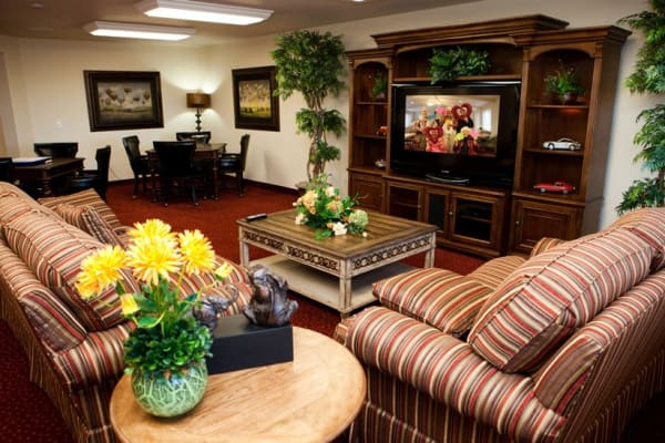 Cozy seating in the entertainment room at Ashwood Meadows Gracious Retirement Living in Johns Creek, Georgia