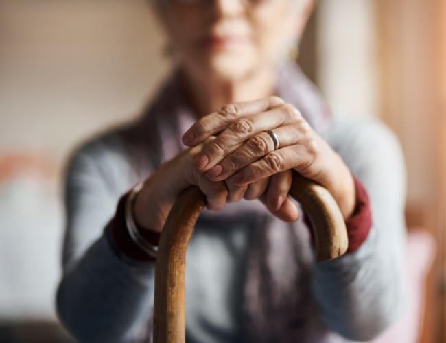 Senior Living Options at Ebenezer Senior Living