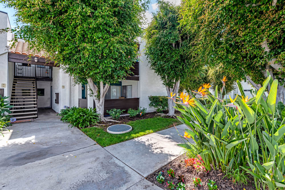 Building surrounded by a lush green landscape at Kendallwood Apartments in Whittier, California