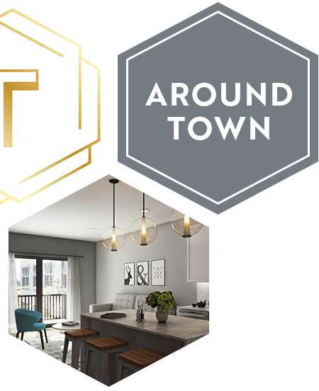 Apartments For Rent In Tribeca: St. Louis, MO Apartments For Rent In Central