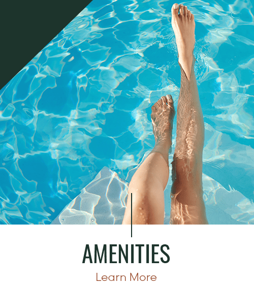 Link to amenities page of Panther Riverside Parc Apartments in Atlanta, Georgia