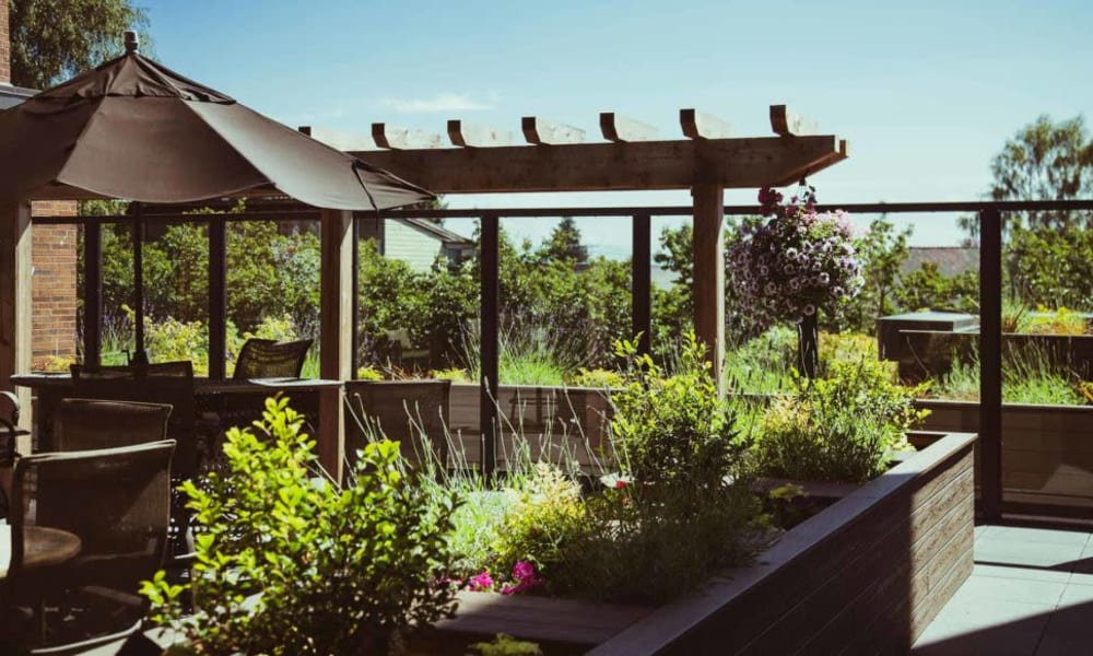 Garden on the roof at Quail Park Memory Care Residences of West Seattle in Seattle, Washington