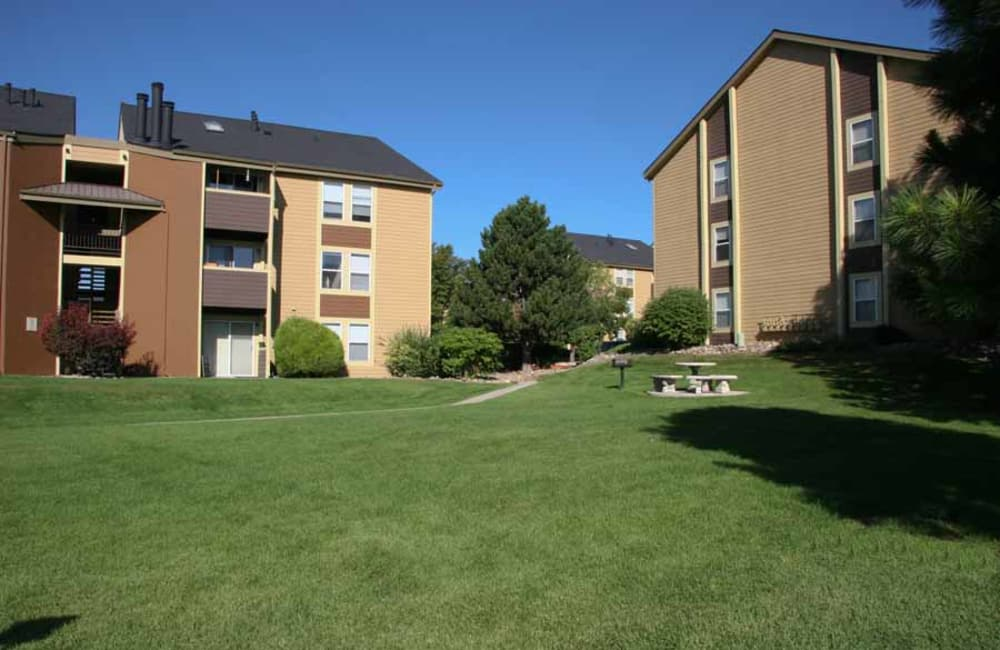 Plenty of green spaces to run around at Montair Apartment Homes in Thornton, CO