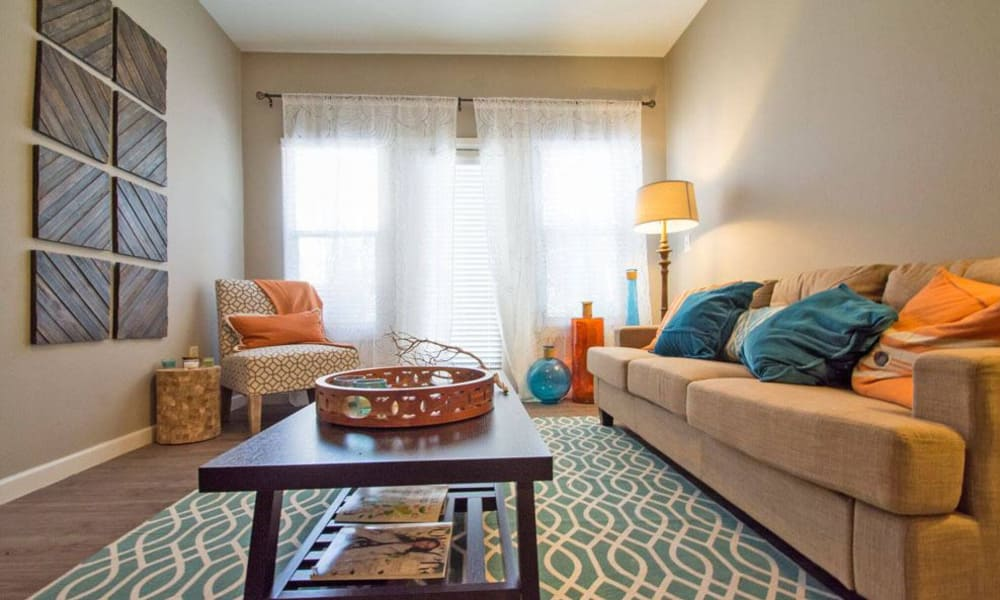 The Niche Apartments offers spacious living rooms in San Antonio, Texas