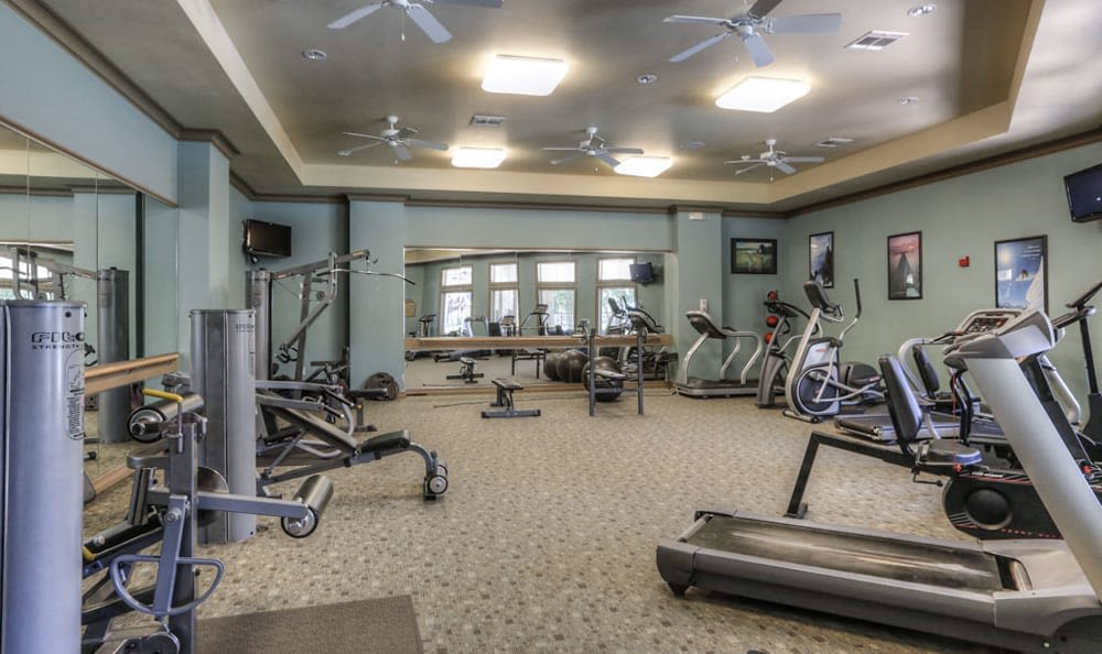 Range of equipment in the fitness center at Stone Creek Apartments