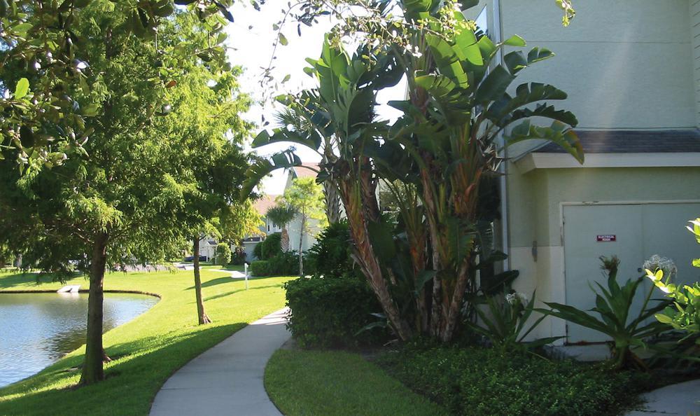 walking path near pond at Springs at Palma Sola in Bradenton, FL