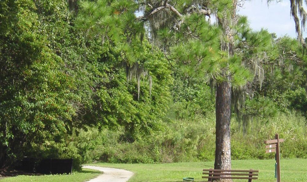 walking trails at Springs at Palma Sola in Bradenton, FL