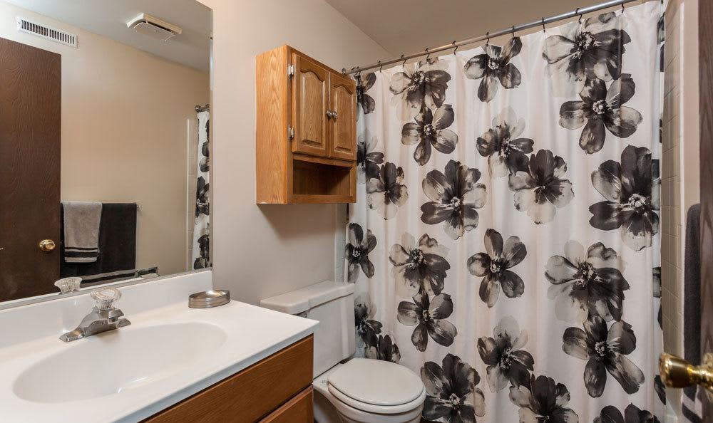 Bathroom at Raintree Island Apartments home in Tonawanda, NY
