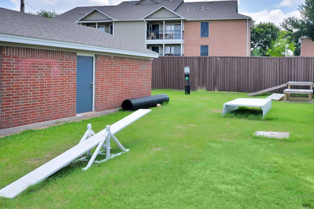 Dog agility course at Fountains at Steeplechase Apartments in Plano, TX