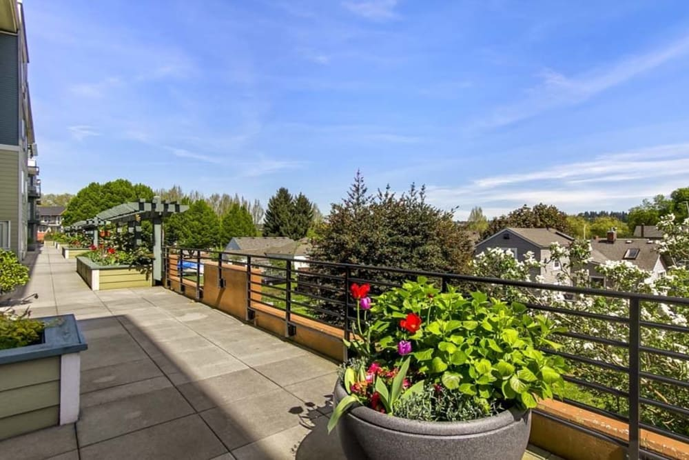 Rooftop views at Merrill Gardens at Renton Centre in Renton, Washington.