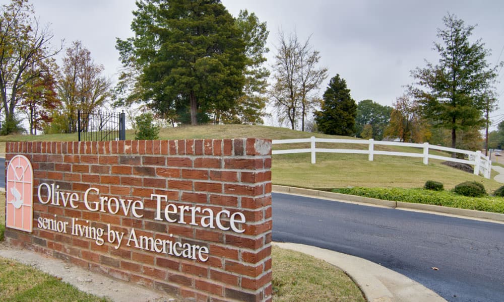 Branding and Signage outside of Olive Grove Terrace Senior Living in Olive Branch, Mississippi