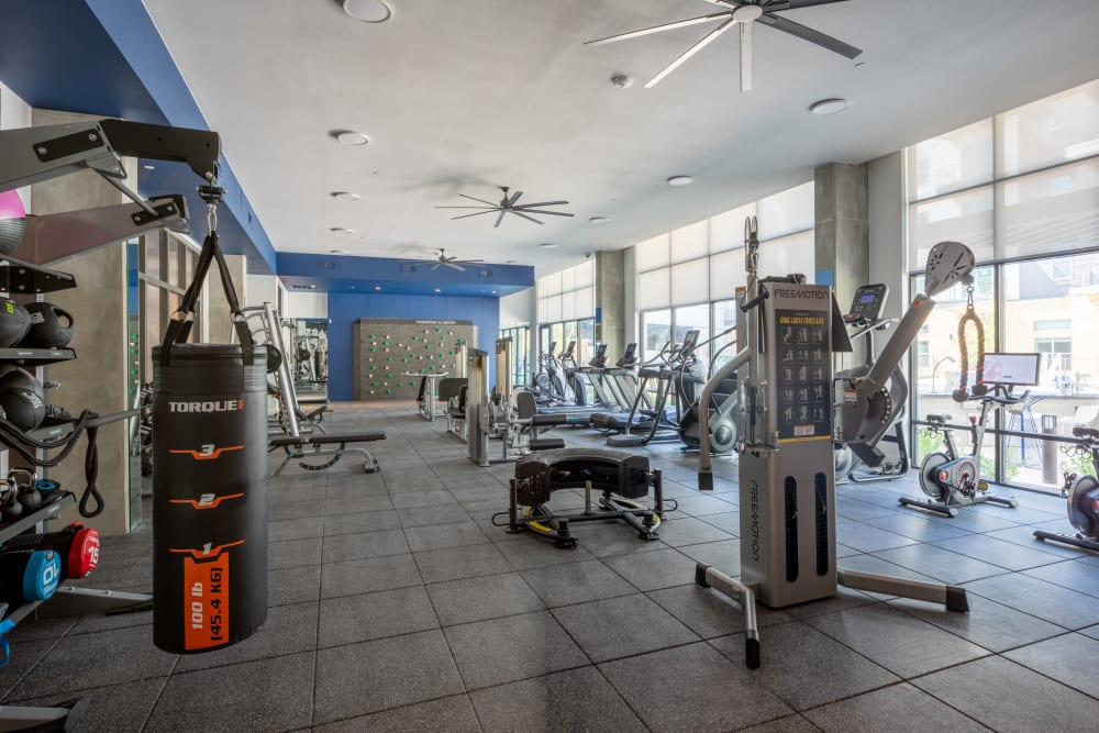 Large fitness center with modern equipment at  in San Antonio,TX