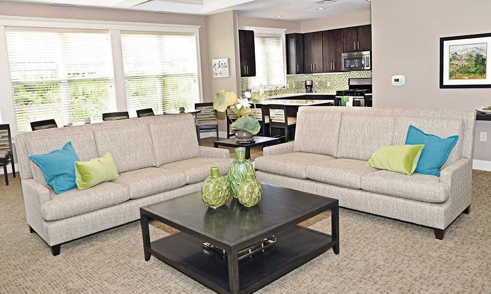 Cozy couches  at Canal Crossing home in Camillus, New York