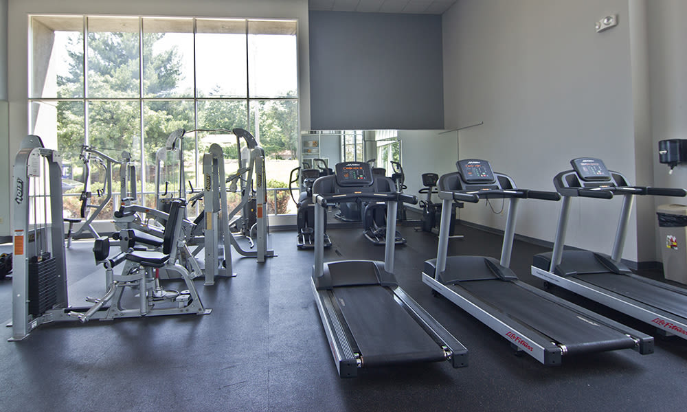 Fitness Center at Lakeshore Drive