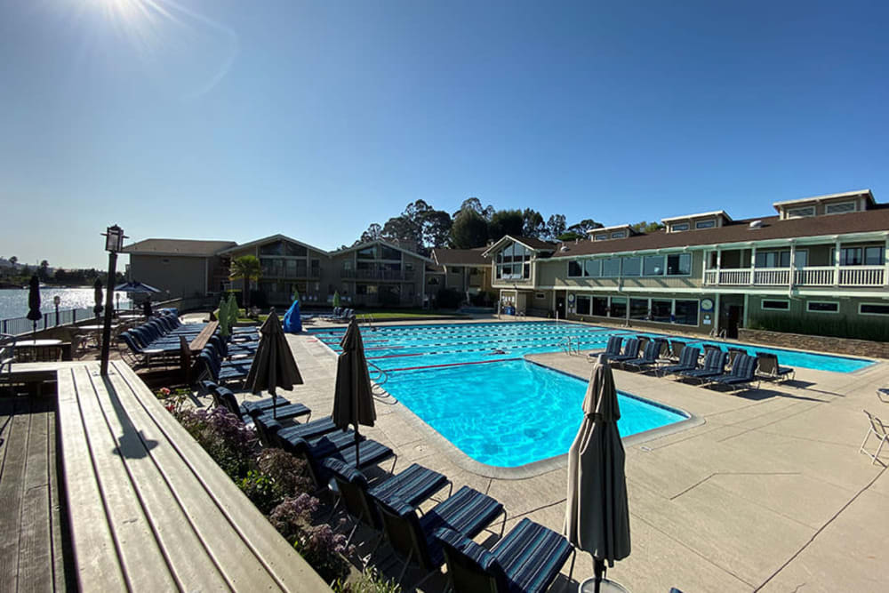 Daytime view of the outdoor pool at Harbor Point Apartments in Mill Valley, California