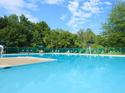 Enjoy apartments with a swimming pool at Cedar Gardens and Towers Apartments & Townhomes