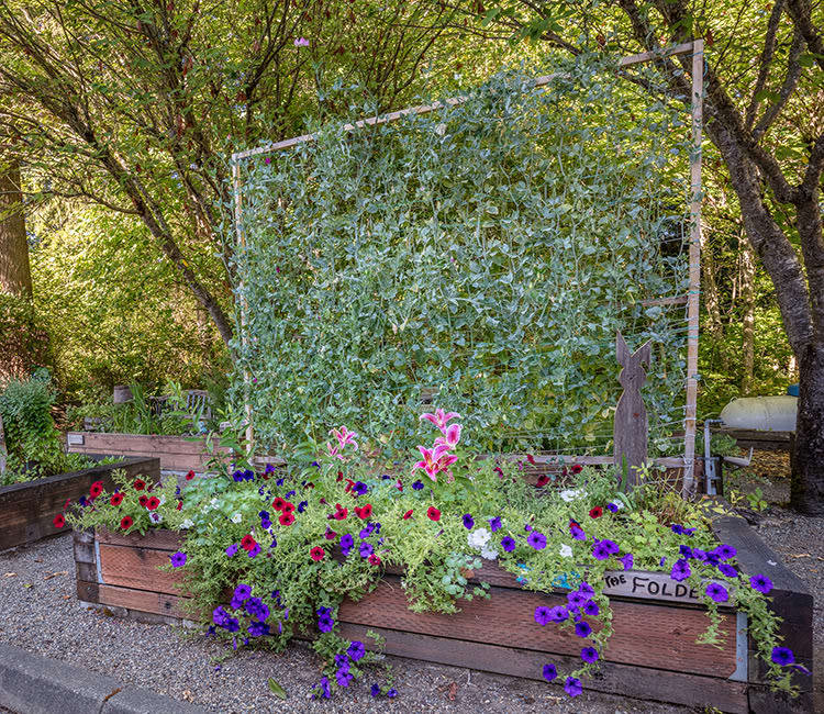 Exterior garden at The Firs in Olympia, Washington