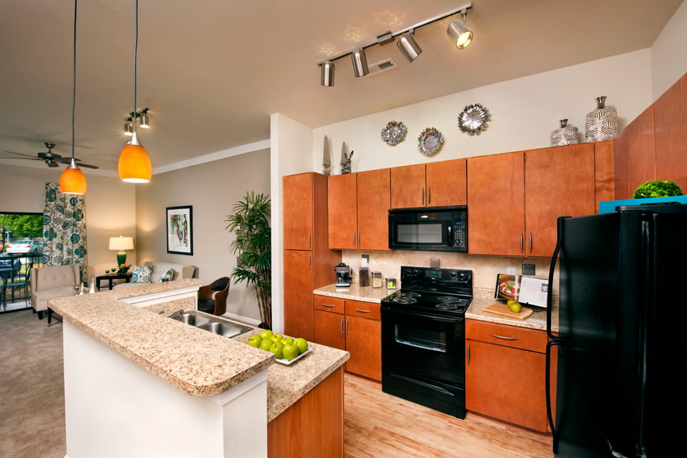 Kitchen with black appliances at Perimeter Lofts kitchen in Charlotte, North Carolina