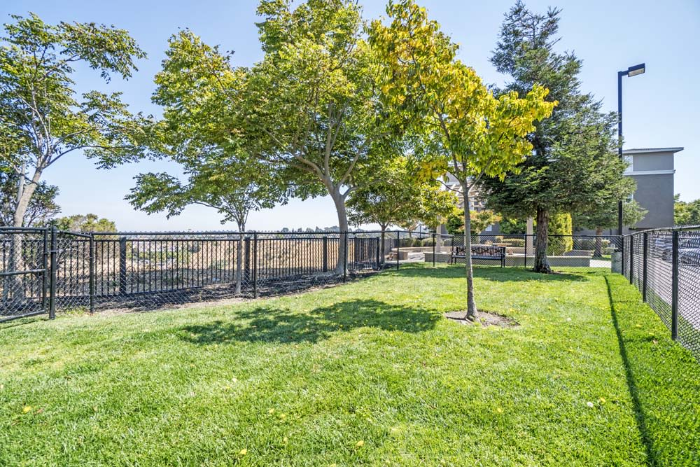 Dog Park at The Tides Apartments in Richmond, CA