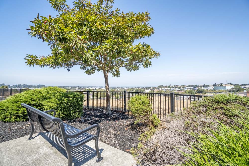 Beautiful Views at The Tides Apartments in Richmond, CA