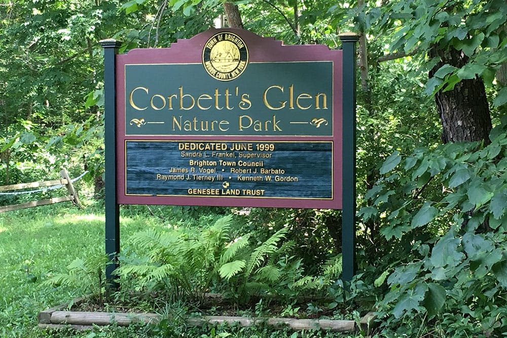 Nature park near apartments at Oak Hill Terrace