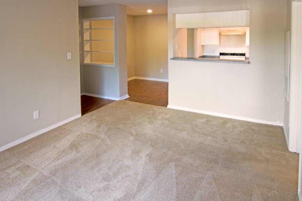 Meadow Park Apartments offers a beautiful living room in Alvin, Texas