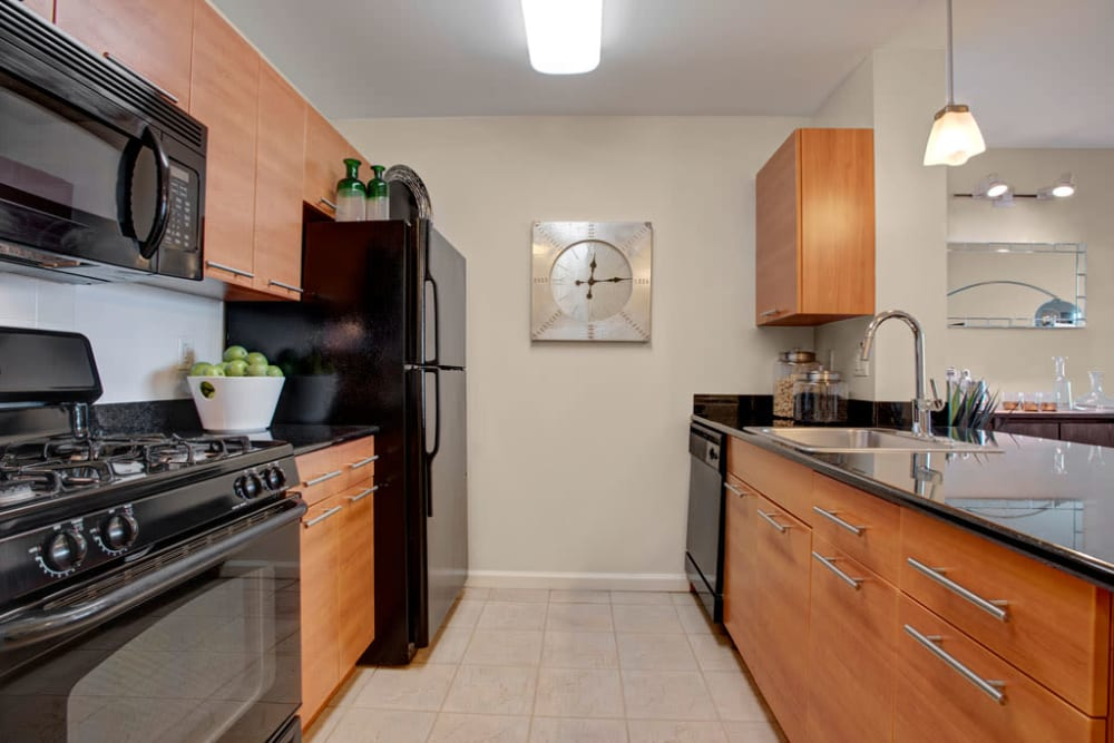 Artistic kitchens at Skyline New Rochelle in New Rochelle, New York