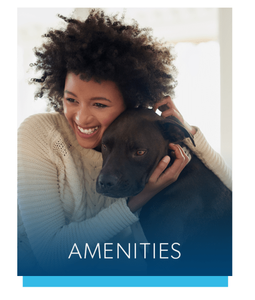 View the amenities at Elmwood Terrace Apartments & Townhomes in Rochester, New York