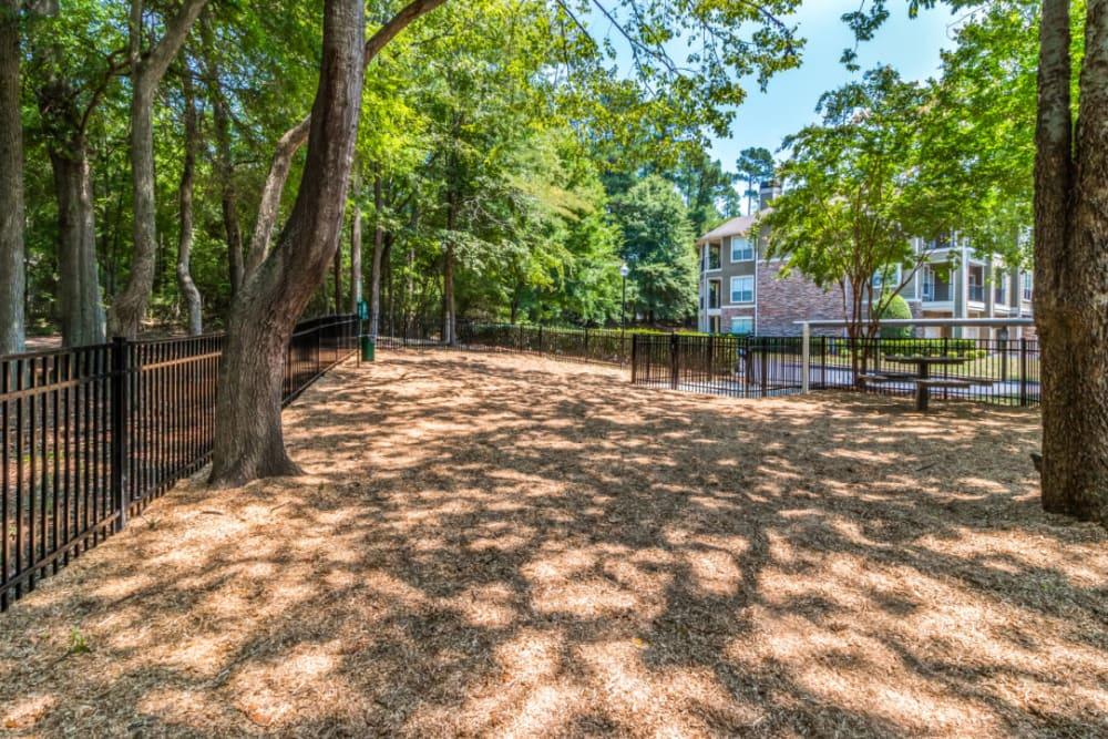 Spacious dog park with picnic bench at Marquis at Carmel Commons in Charlotte, North Carolina