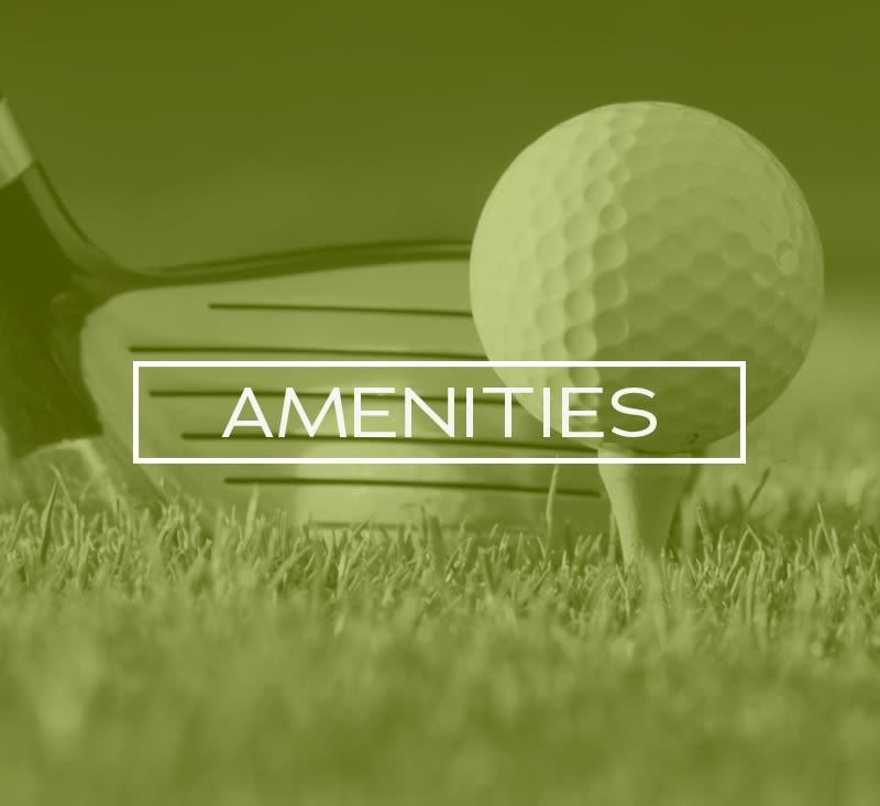 View all the amenities available at apartments in Mukilteo, Washington