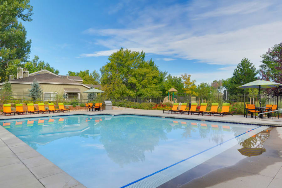 Swimming pool at Environs Residential Rental Community in Westminster, Colorado