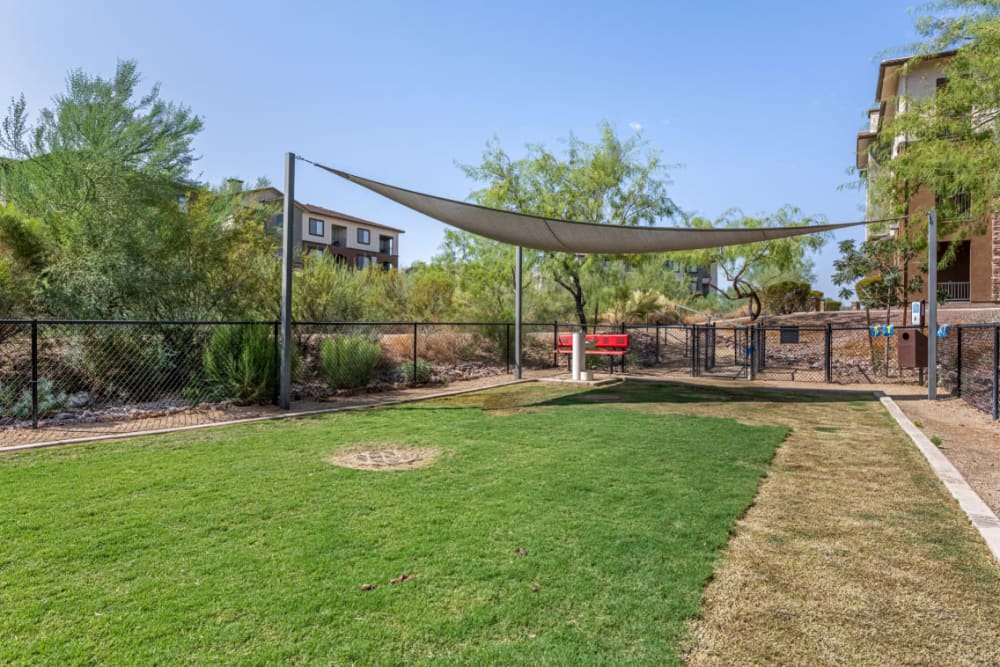 Enclosed dog park with partial shade and water fountain at Marquis at Sonoran Preserve in Phoenix, Arizona