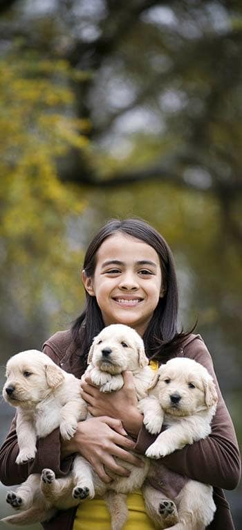 Girl holding puppies at Niles Veterinary Clinic in Niles, Ohio