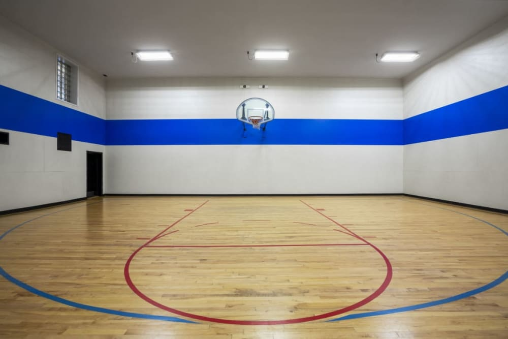Indoor basketball court at Sofi Parc Grove in Stamford, Connecticut