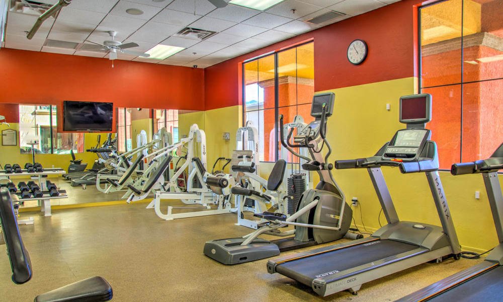 Stay healthy in the Oro Vista Apartments fitness center in Oro Valley, Arizona