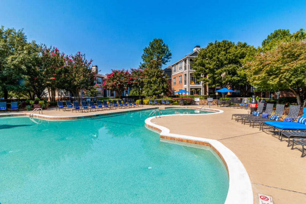 Sparkling pool surrounded by lounge chairs at Marquis of Carmel Valley in Charlotte, North Carolina