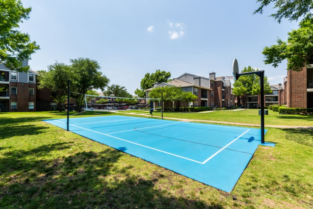 Full basketball and volleyball court at Marquis at Legacy in Plano, Texas