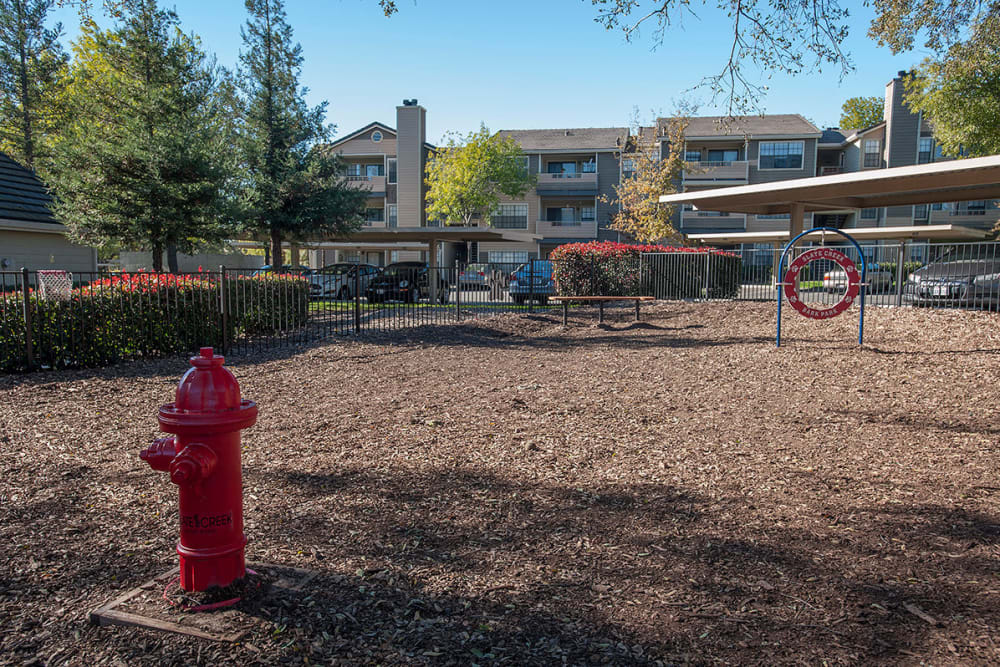 Dogs can enjoy the bark park at Slate Creek Apartments in Roseville, California
