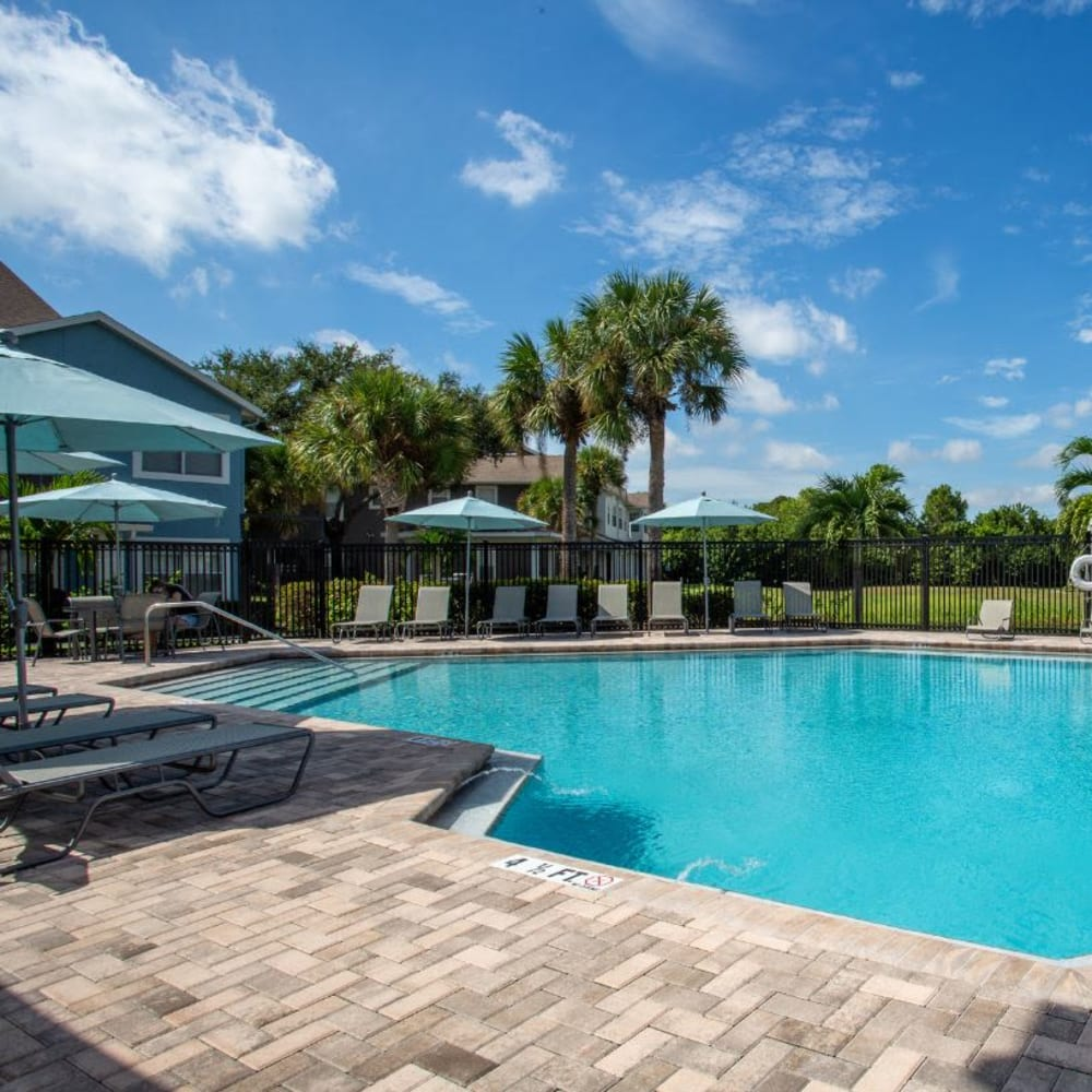 A luxury swimming pool at Calais Park Apartments in St Petersburg, Florida