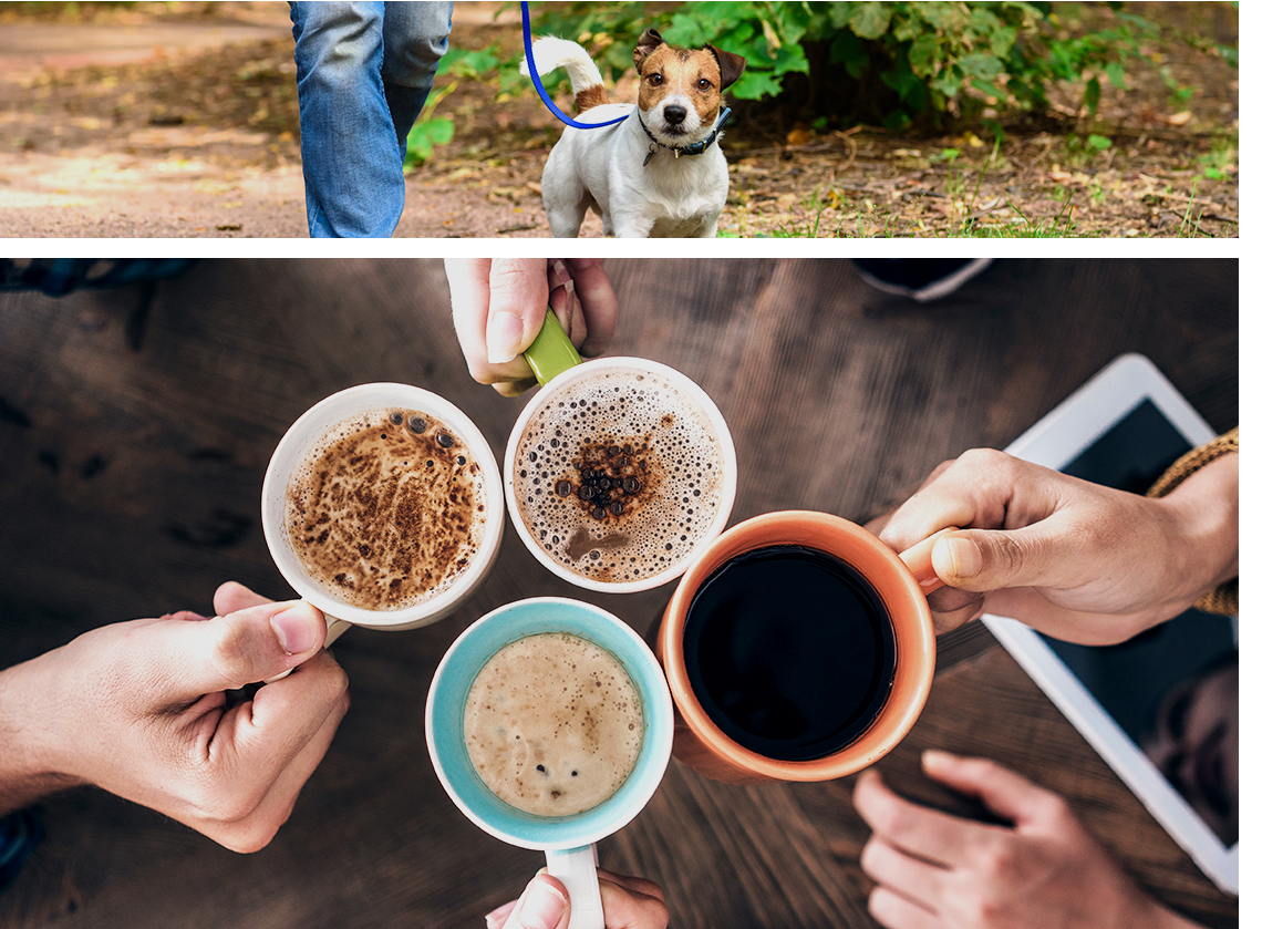Collage showing a resident taking his dog for a walk as well as residents enjoying coffee together at Grayson Ridge in North Richland Hills, Texas