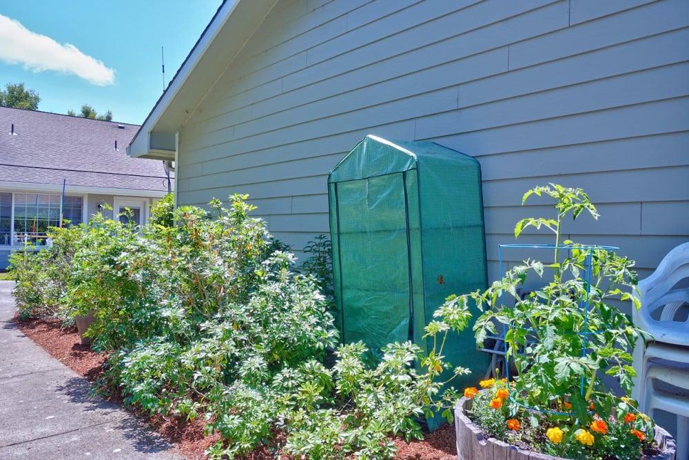Gardening at Regency Park Place at Corvallis in Corvallis, OR.